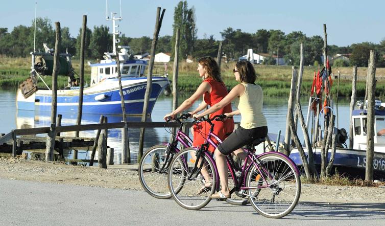 Voir Faire du vélo en Vendée